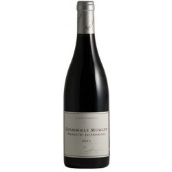 2015 Chambolle-Musigny Premier Cru, Les Amoureuses. Jerome Castagnier-20
